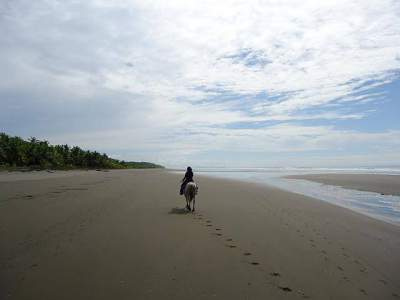 Horse Back riden on the beach